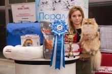 Olissiya на выставке в Воронеже